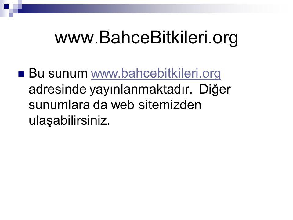 www.BahceBitkileri.org Bu sunum www.bahcebitkileri.org adresinde yayınlanmaktadır.
