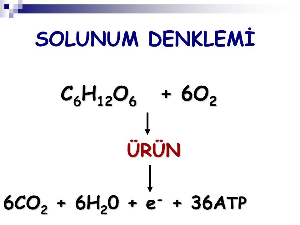 SOLUNUM DENKLEMİ C6H12O6 + 6O2