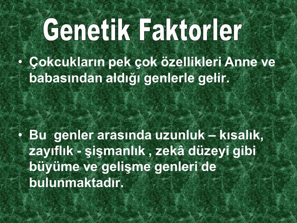Genetik Faktorler Çokcukların pek çok özellikleri Anne ve babasından aldığı genlerle gelir.