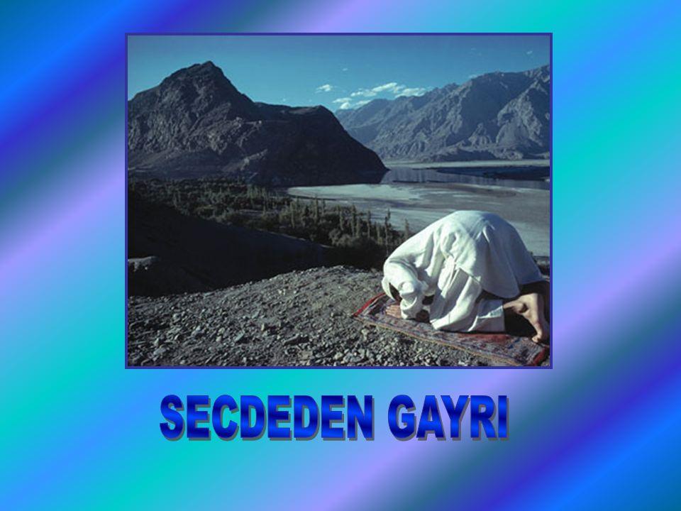 SECDEDEN GAYRI