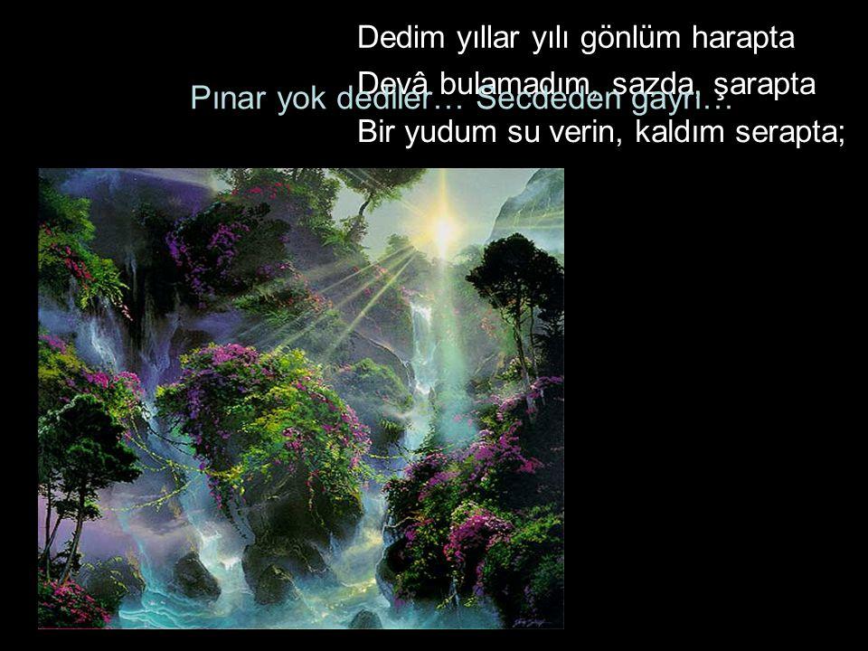 Pınar yok dediler… Secdeden gayrı…