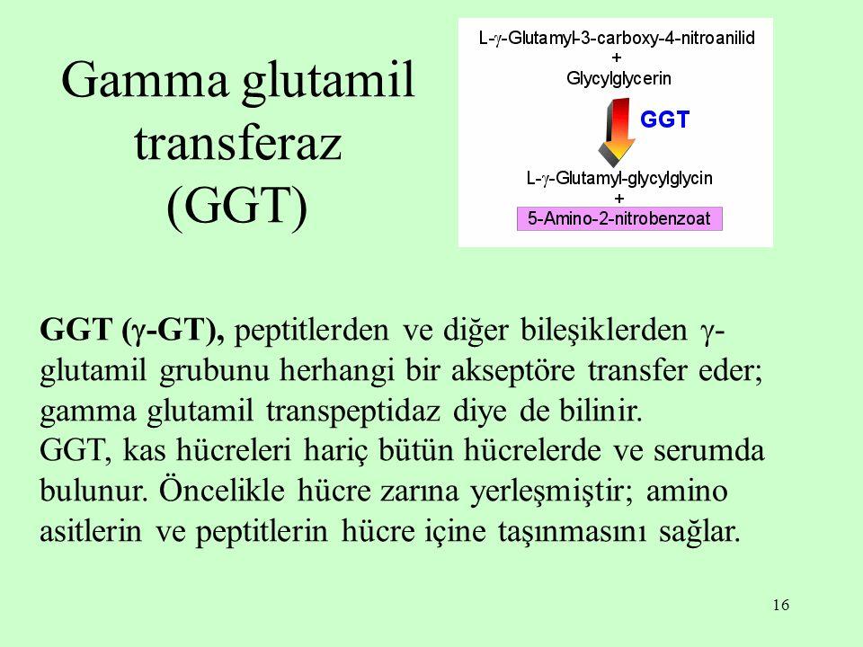 Gamma glutamil transferaz (GGT)