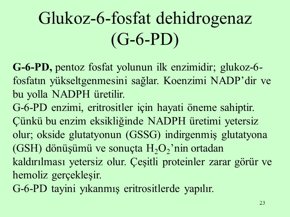 Glukoz-6-fosfat dehidrogenaz (G-6-PD)