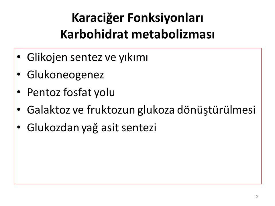 Karaciğer Fonksiyonları Karbohidrat metabolizması