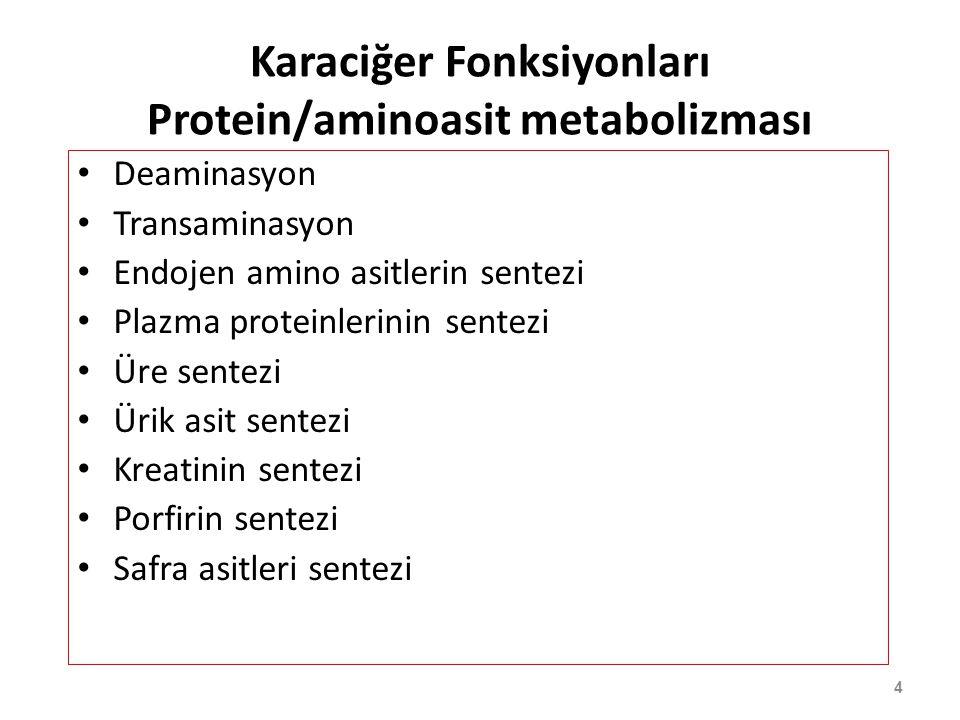 Karaciğer Fonksiyonları Protein/aminoasit metabolizması