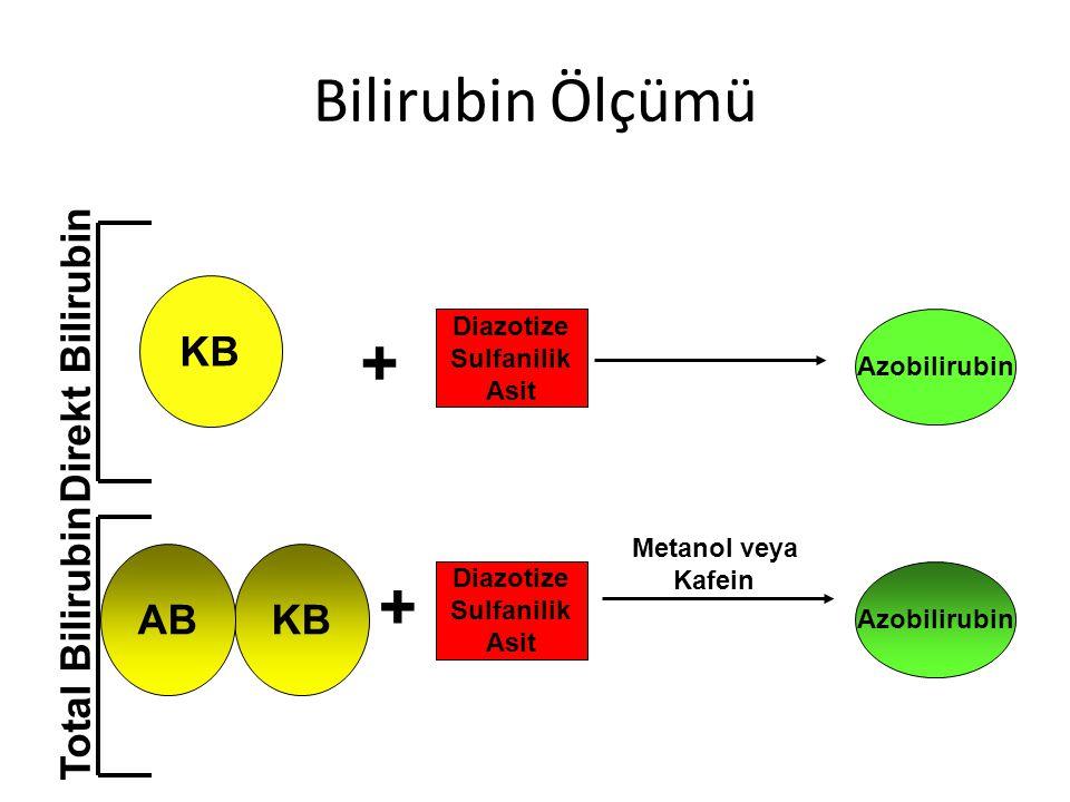 Bilirubin Ölçümü + + KB Direkt Bilirubin AB KB Total Bilirubin
