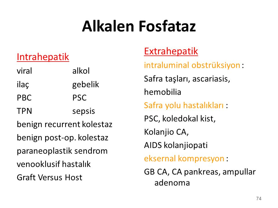 Alkalen Fosfataz Extrahepatik Intrahepatik intraluminal obstrüksiyon :