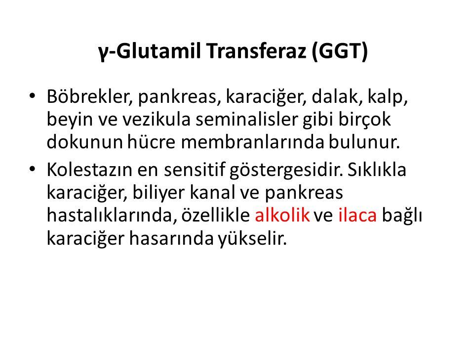 γ-Glutamil Transferaz (GGT)