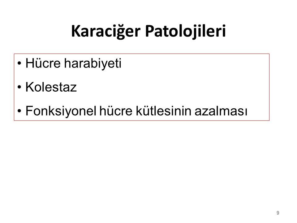 Karaciğer Patolojileri