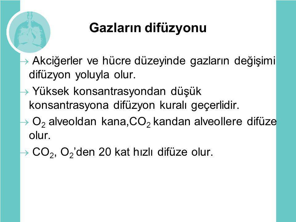 Gazların difüzyonu Akciğerler ve hücre düzeyinde gazların değişimi difüzyon yoluyla olur.