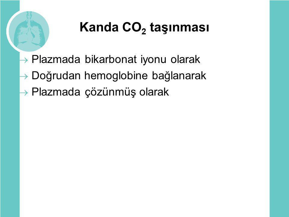 Kanda CO2 taşınması Plazmada bikarbonat iyonu olarak