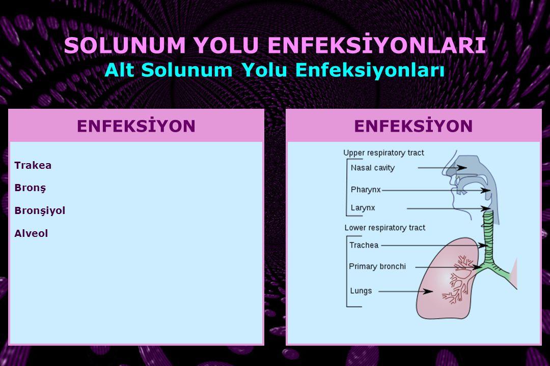 SOLUNUM YOLU ENFEKSİYONLARI Alt Solunum Yolu Enfeksiyonları