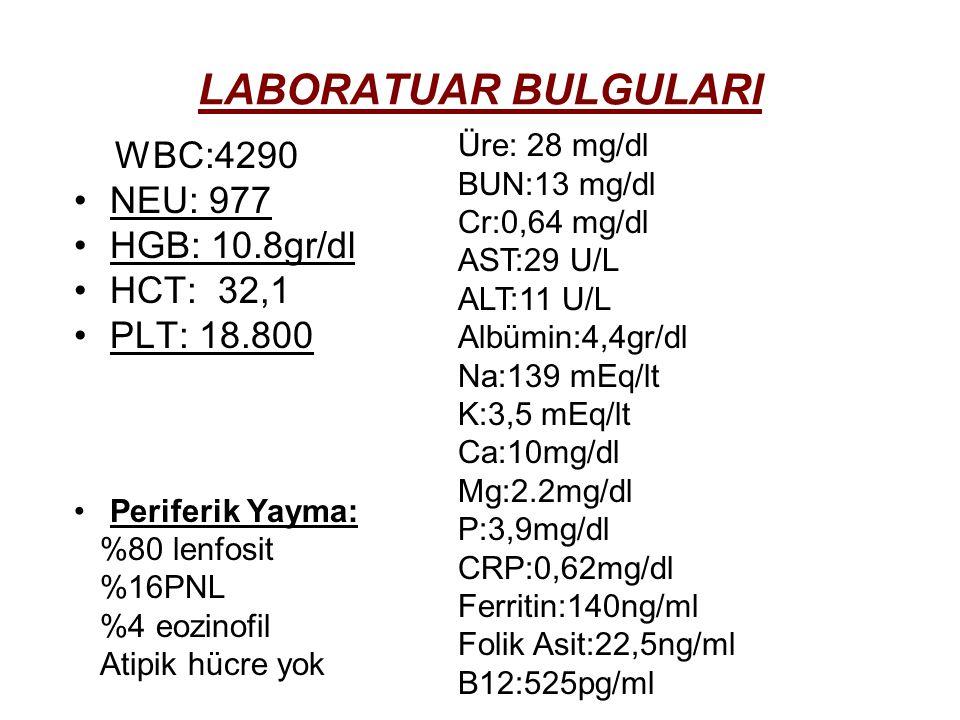 LABORATUAR BULGULARI WBC:4290 NEU: 977 HGB: 10.8gr/dl HCT: 32,1