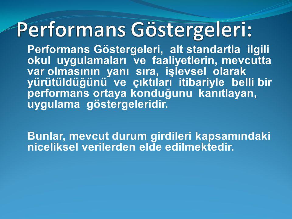 Performans Göstergeleri: