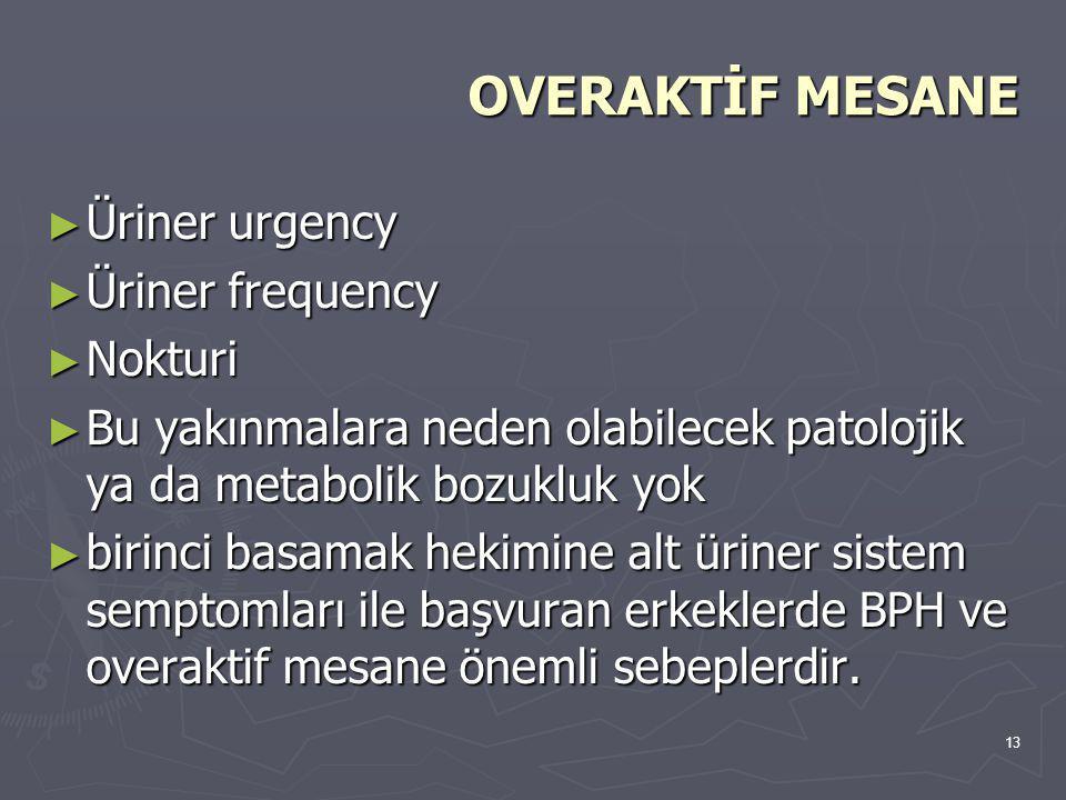OVERAKTİF MESANE Üriner urgency Üriner frequency Nokturi