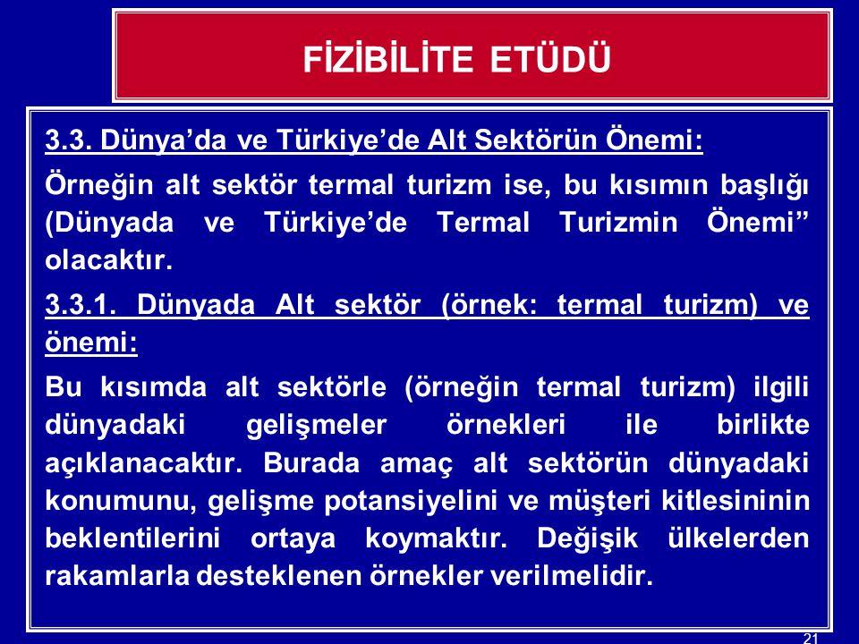FİZİBİLİTE ETÜDÜ 3.3. Dünya'da ve Türkiye'de Alt Sektörün Önemi: