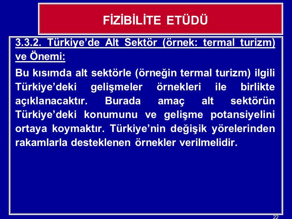 FİZİBİLİTE ETÜDÜ 3.3.2. Türkiye'de Alt Sektör (örnek: termal turizm) ve Önemi: