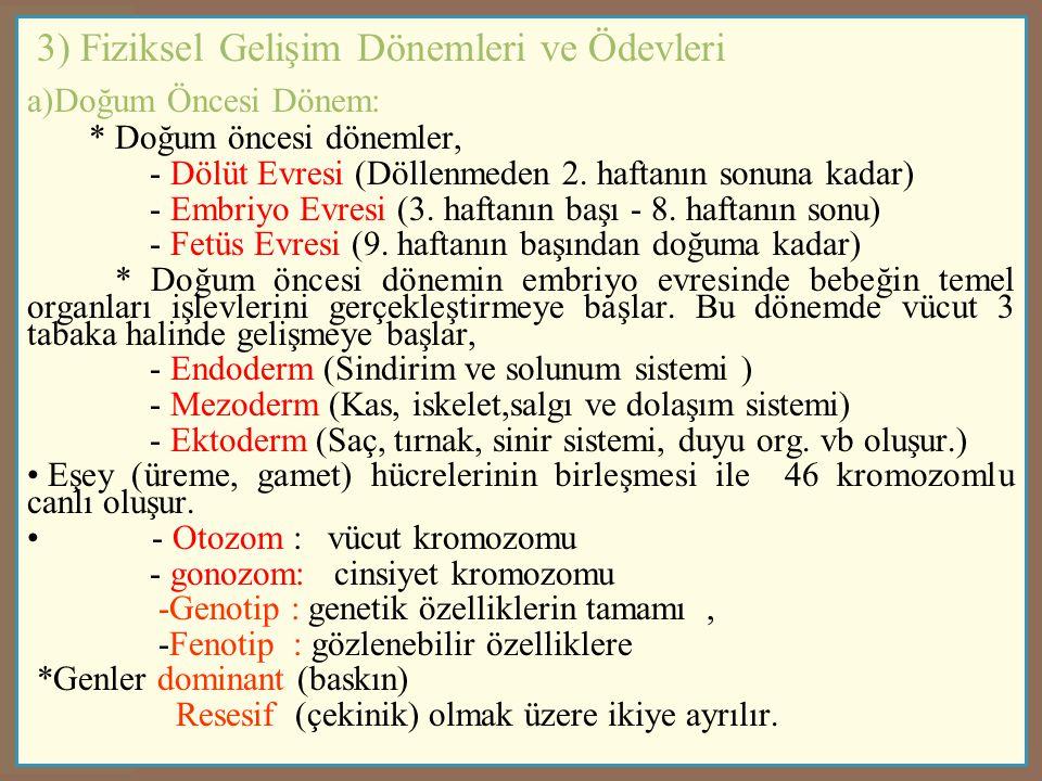 3) Fiziksel Gelişim Dönemleri ve Ödevleri
