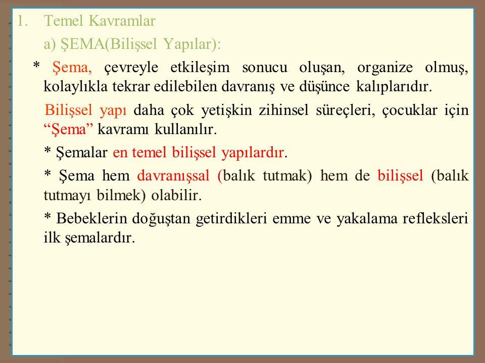 Temel Kavramlar a) ŞEMA(Bilişsel Yapılar):