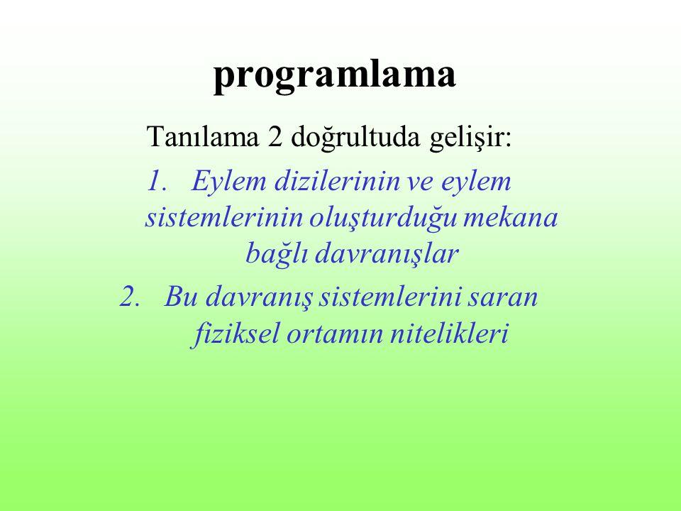 programlama Tanılama 2 doğrultuda gelişir: