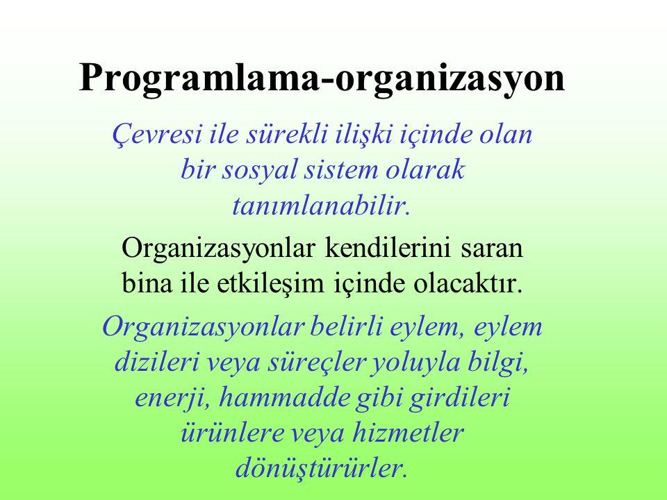 Programlama-organizasyon