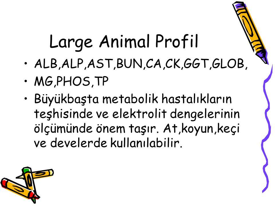 Large Animal Profil ALB,ALP,AST,BUN,CA,CK,GGT,GLOB, MG,PHOS,TP