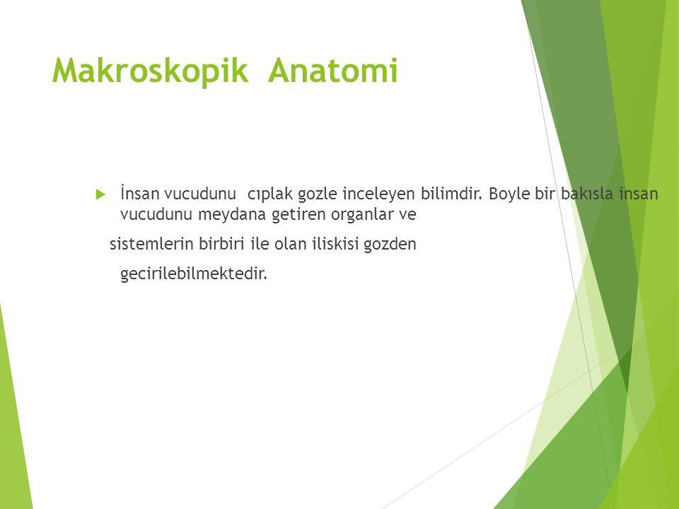 Makroskopik Anatomi İnsan vucudunu cıplak gozle inceleyen bilimdir. Boyle bir bakısla insan vucudunu meydana getiren organlar ve.