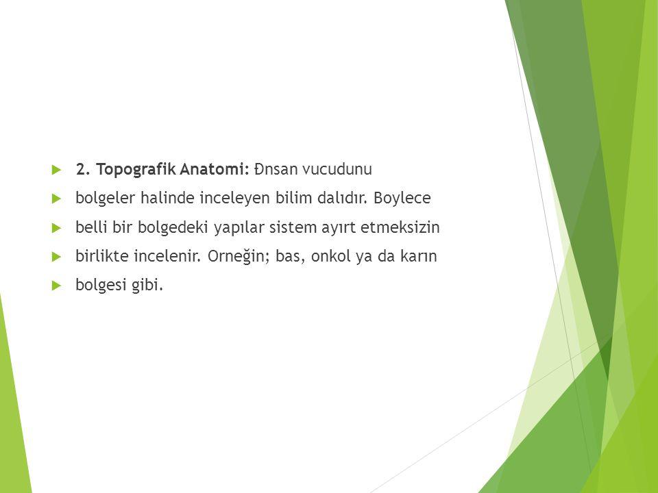 2. Topografik Anatomi: Đnsan vucudunu