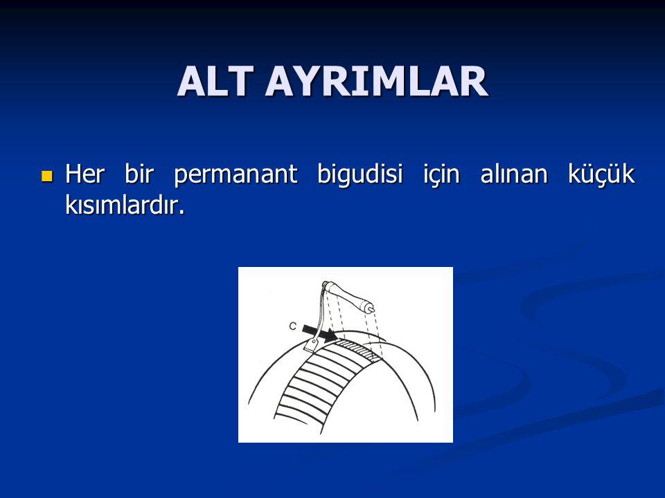ALT AYRIMLAR Her bir permanant bigudisi için alınan küçük kısımlardır.