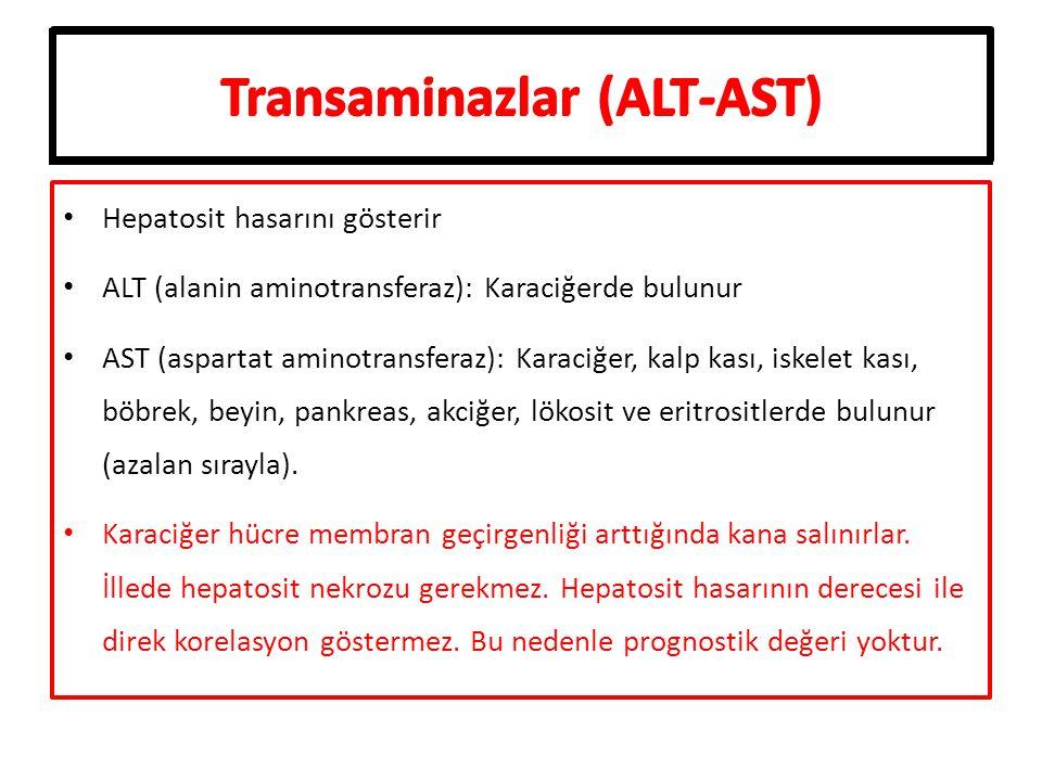 Transaminazlar (ALT-AST)