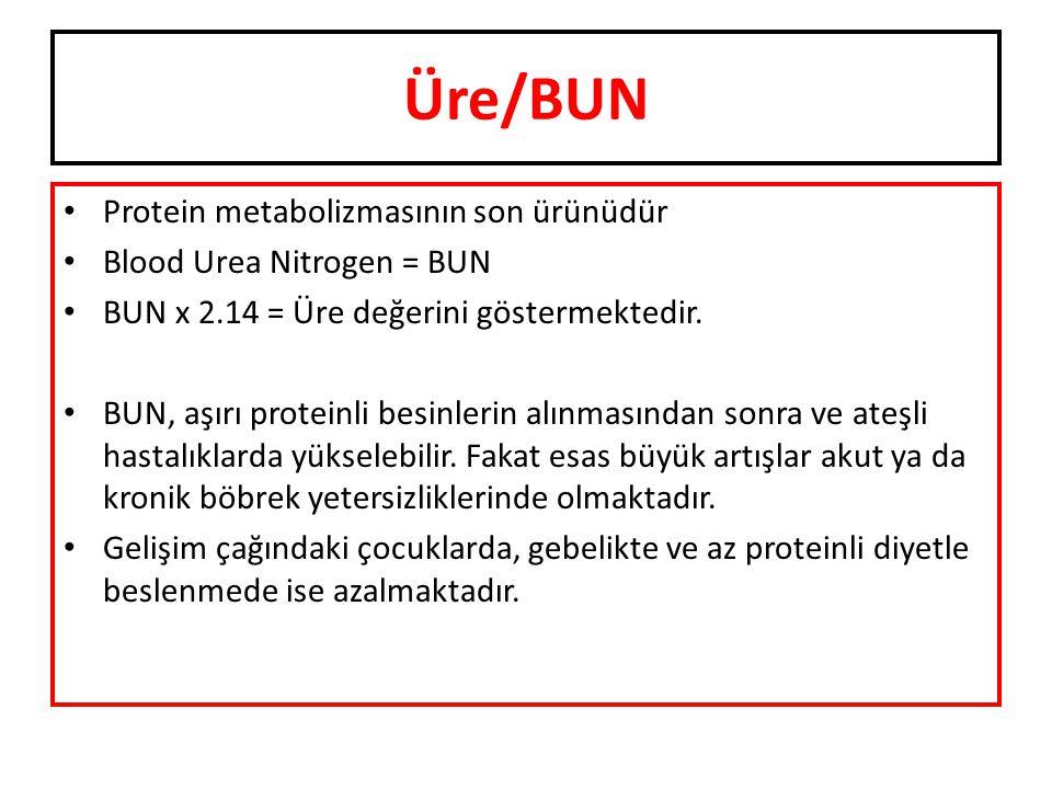 Üre/BUN Protein metabolizmasının son ürünüdür