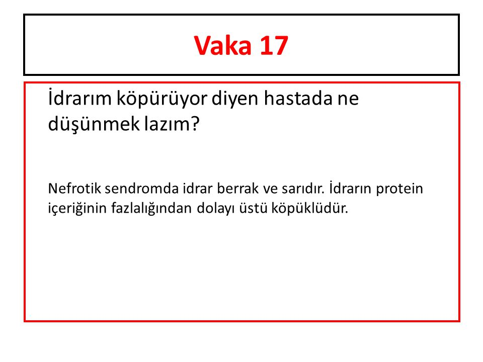Vaka 17