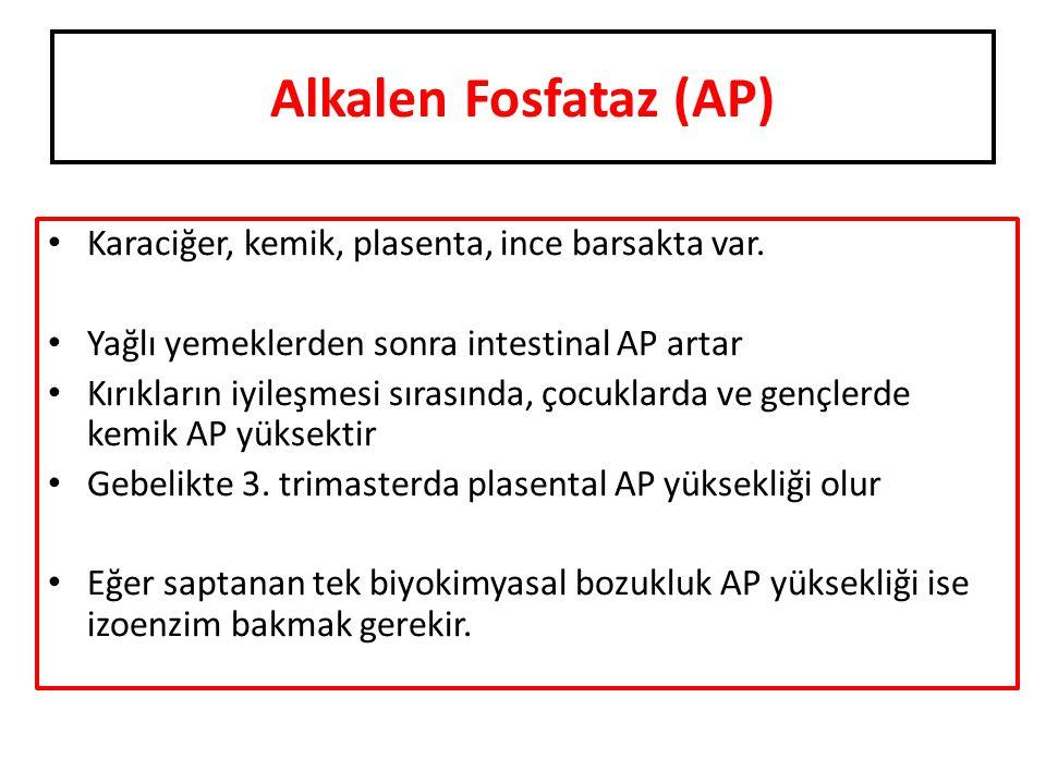 Alkalen Fosfataz (AP) Karaciğer, kemik, plasenta, ince barsakta var.