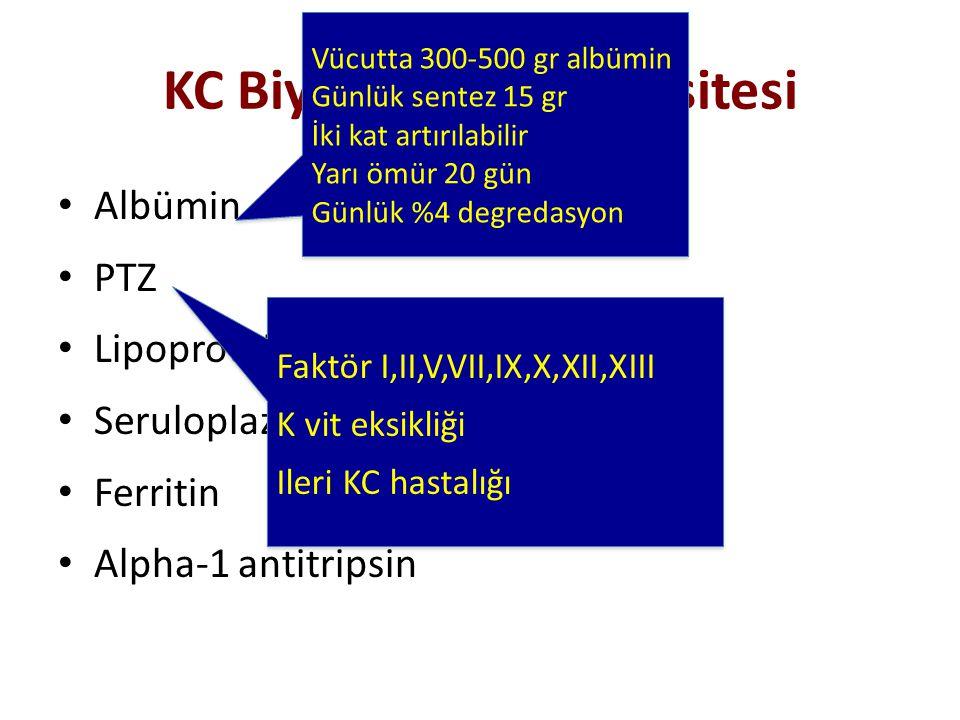 KC Biyosentetik Kapasitesi