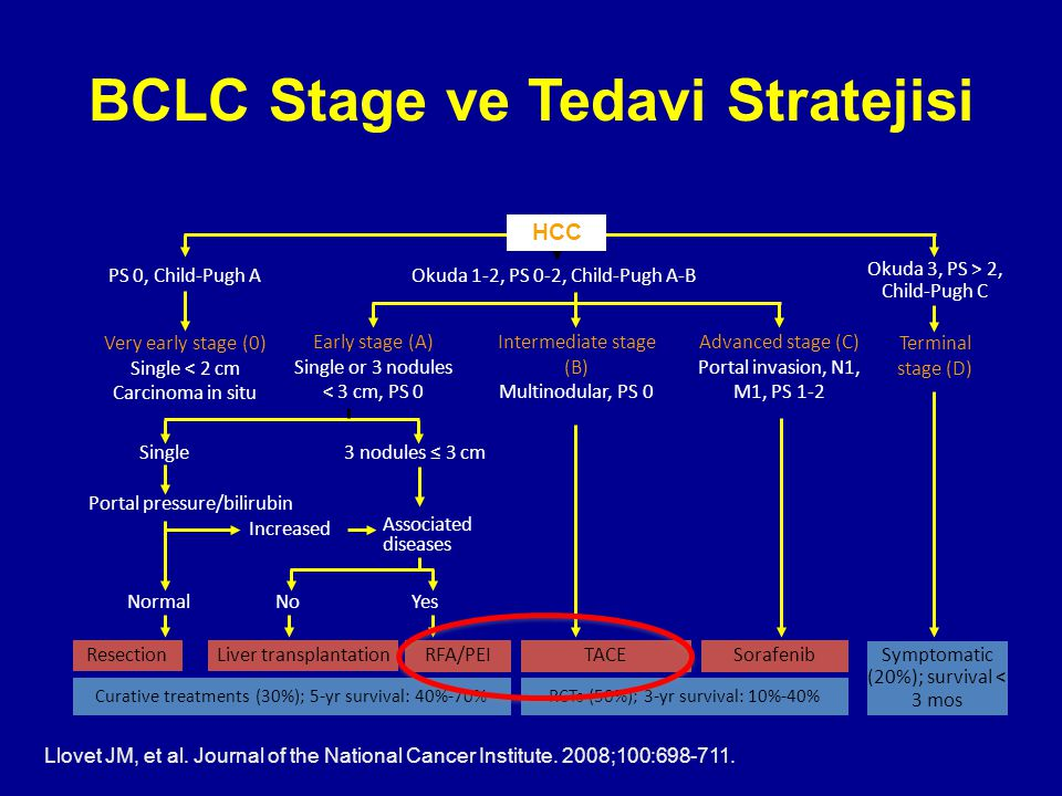 BCLC Stage ve Tedavi Stratejisi