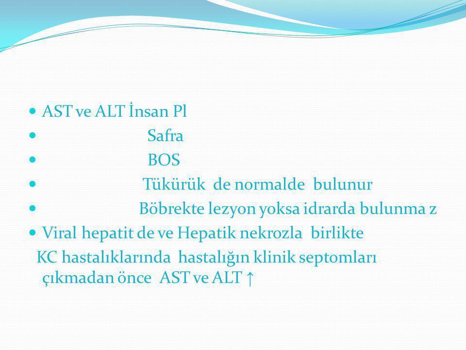 AST ve ALT İnsan Pl Safra. BOS. Tükürük de normalde bulunur. Böbrekte lezyon yoksa idrarda bulunma z.