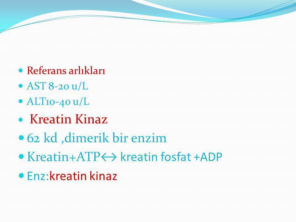 Kreatin+ATP↔ kreatin fosfat +ADP Enz:kreatin kinaz
