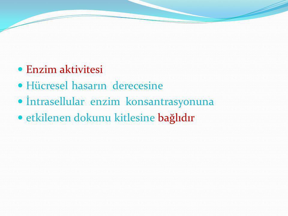 Enzim aktivitesi Hücresel hasarın derecesine. İntrasellular enzim konsantrasyonuna.