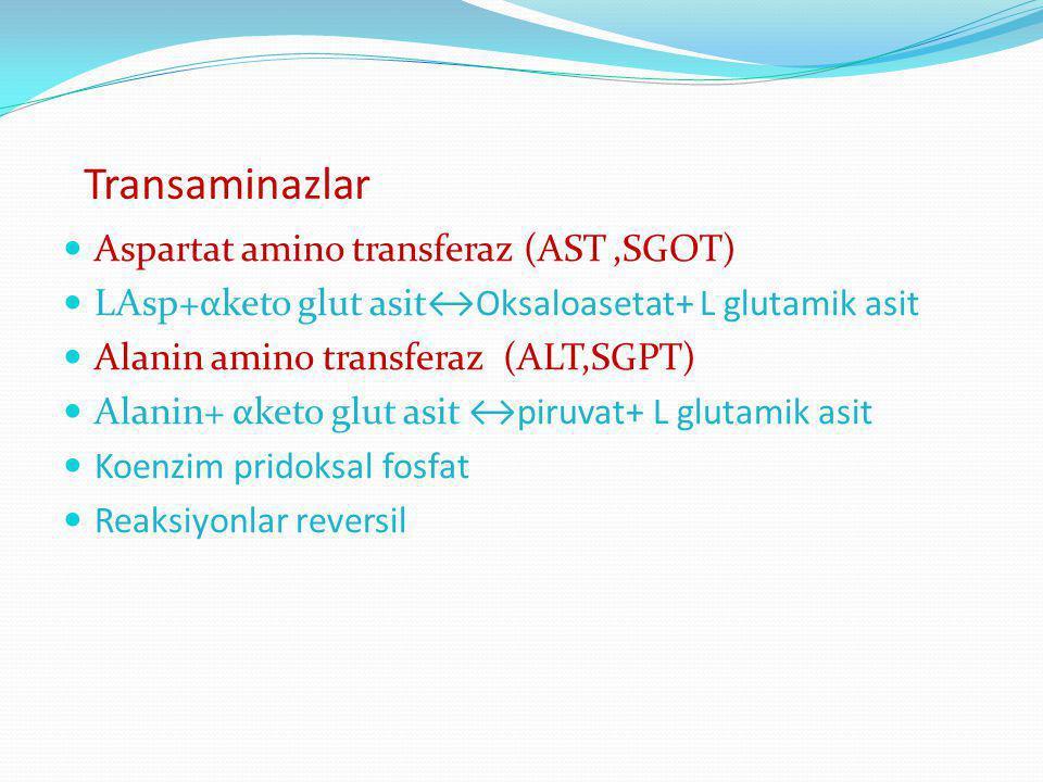 Transaminazlar Aspartat amino transferaz (AST ,SGOT)