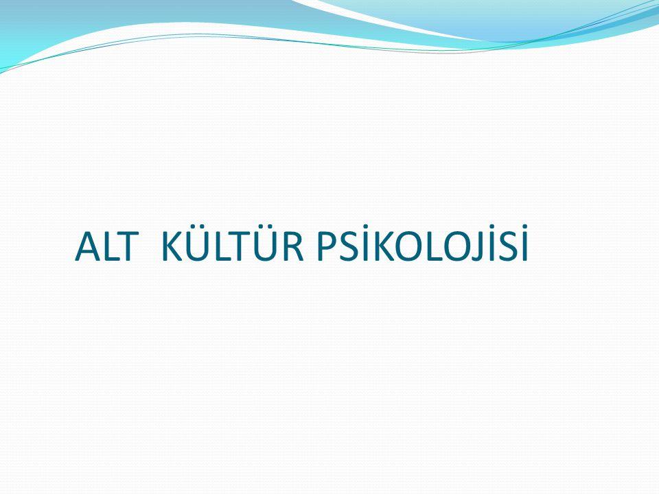 ALT KÜLTÜR PSİKOLOJİSİ