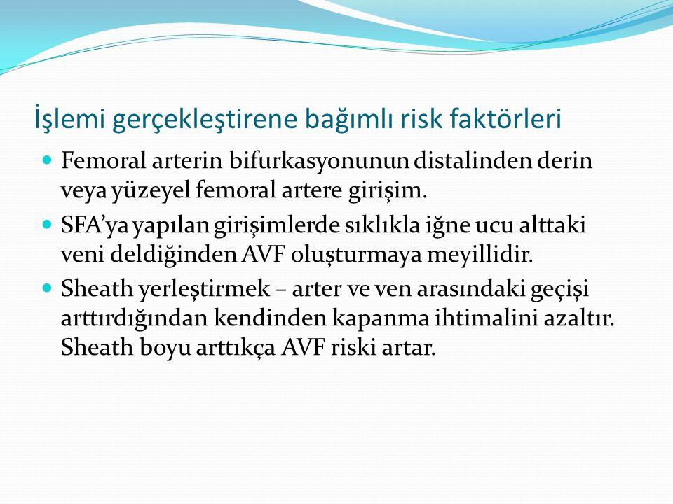 İşlemi gerçekleştirene bağımlı risk faktörleri