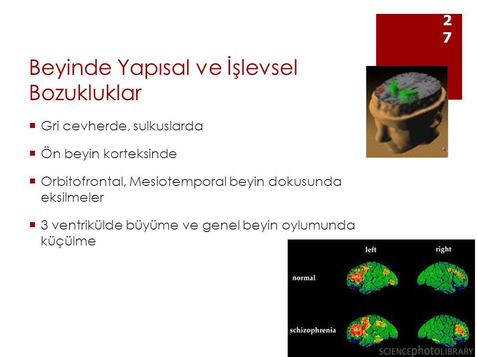 Beyinde Yapısal ve İşlevsel Bozukluklar