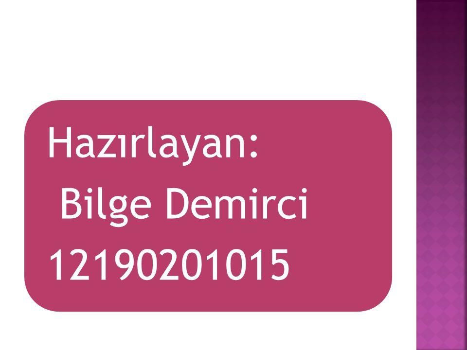 Hazırlayan: Bilge Demirci 12190201015