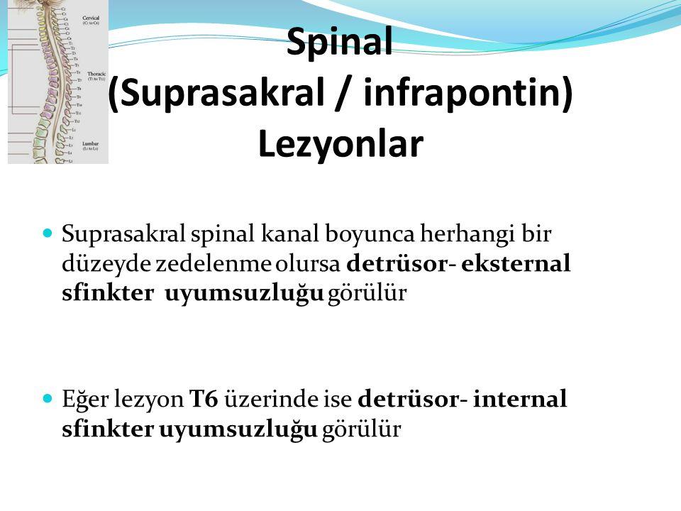 Spinal (Suprasakral / infrapontin) Lezyonlar