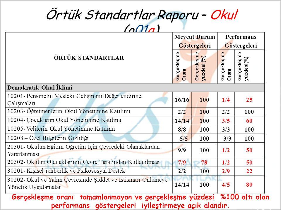 Örtük Standartlar Raporu – Okul (o01a)