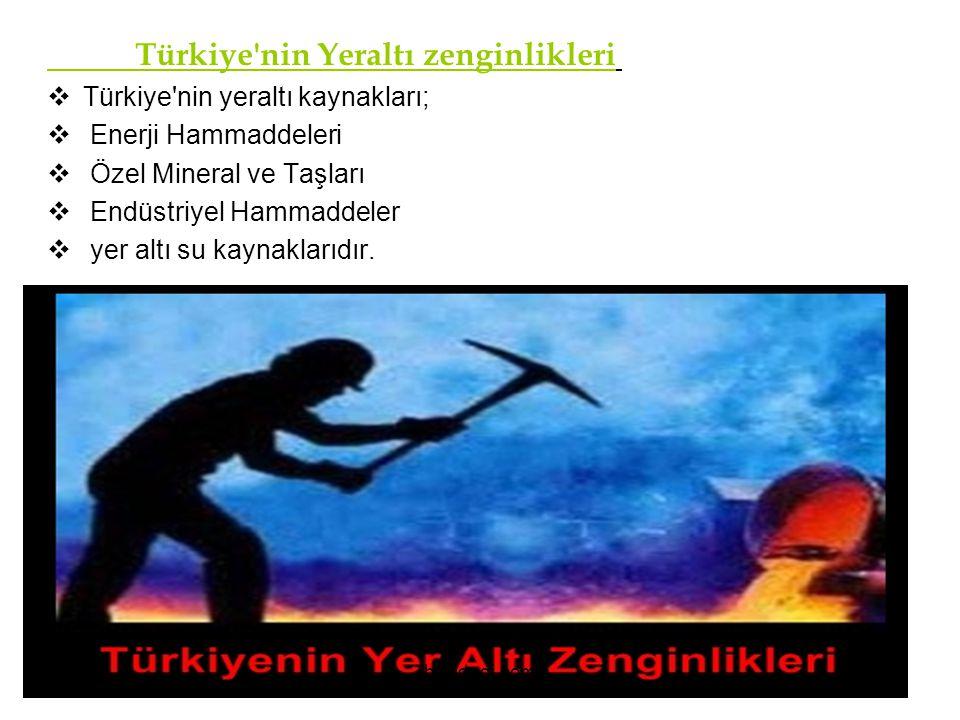 Türkiye nin Yeraltı zenginlikleri
