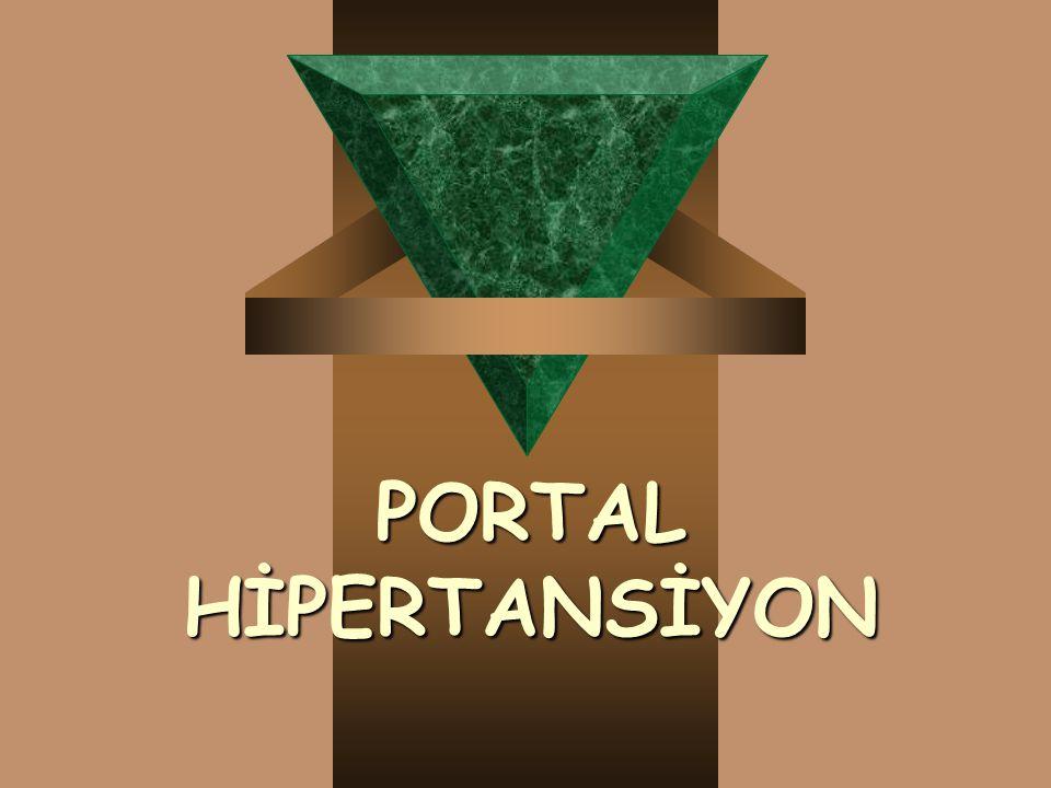 PORTAL HİPERTANSİYON