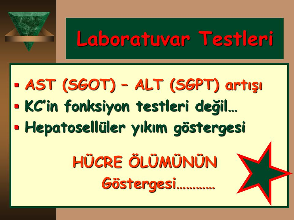 Laboratuvar Testleri AST (SGOT) – ALT (SGPT) artışı