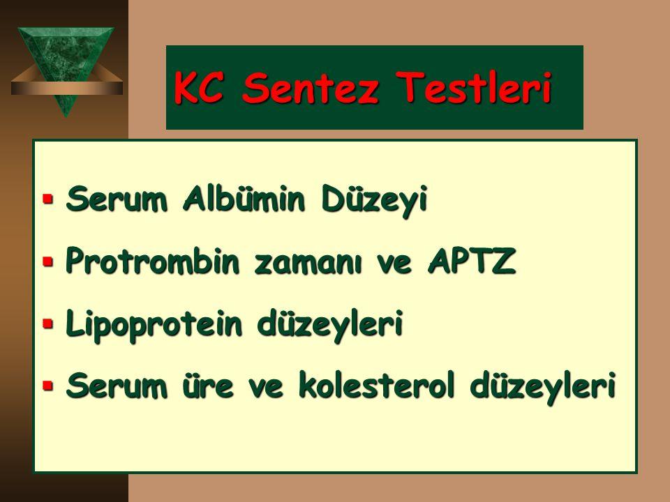 KC Sentez Testleri Serum Albümin Düzeyi Protrombin zamanı ve APTZ