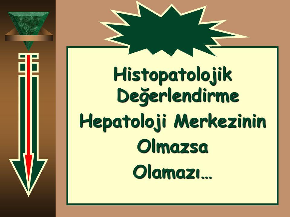 Histopatolojik Değerlendirme Hepatoloji Merkezinin